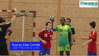 Tournoi de Handball Inter-Comité à Ligne